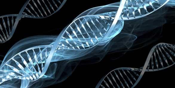 """Moștenirile genetice nu se pot schimba? – """"Miturile care ne schimbă viața"""""""