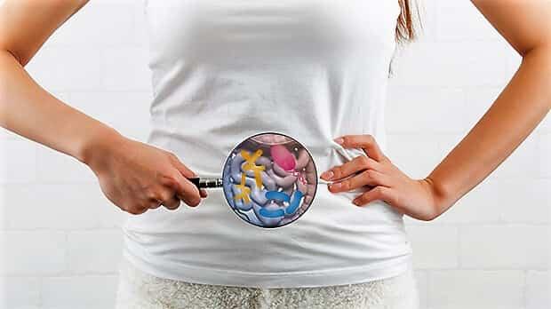 Bacteriile intestinale ar putea creste sansele imunoterapiei in cancer