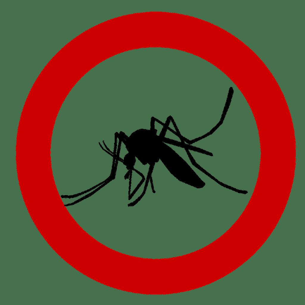 Ce este infectia cu virusul Chikungunya si cum se manifesta? 3